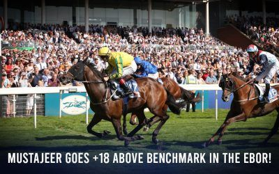Mustajeer runs +18 above benchmark in Ebor! Luke Murrell's York festival recap