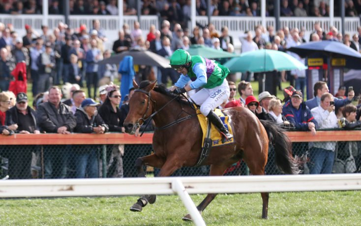 Zed Em outstays rivals to win Grand Annual