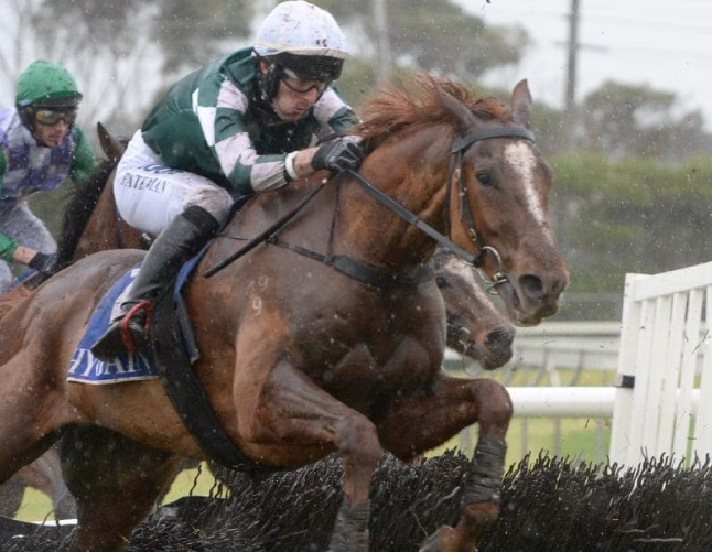 Payne after Killarney Kid wins Kevin Lafferty Hurdle at Bool