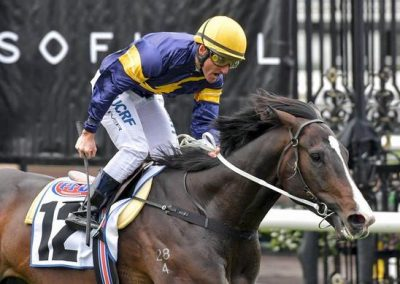 Mick-Price-Confirms-Grunt-Will-Target-Cox-Plate-And-Mackinnon