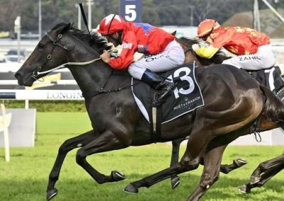 Seabrook-Swoops-To-Give-Damien-Oliver-His-110th-Group-1-Win