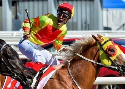A-Mighty-Roar-Caps-Prices-Guineas