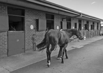 Mick Price Racing Facilites, Sarah Ebbett Photography