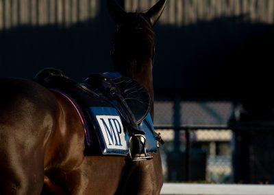 Jump Outs Melbourne Racing Club, Mick Price, John Sadler,