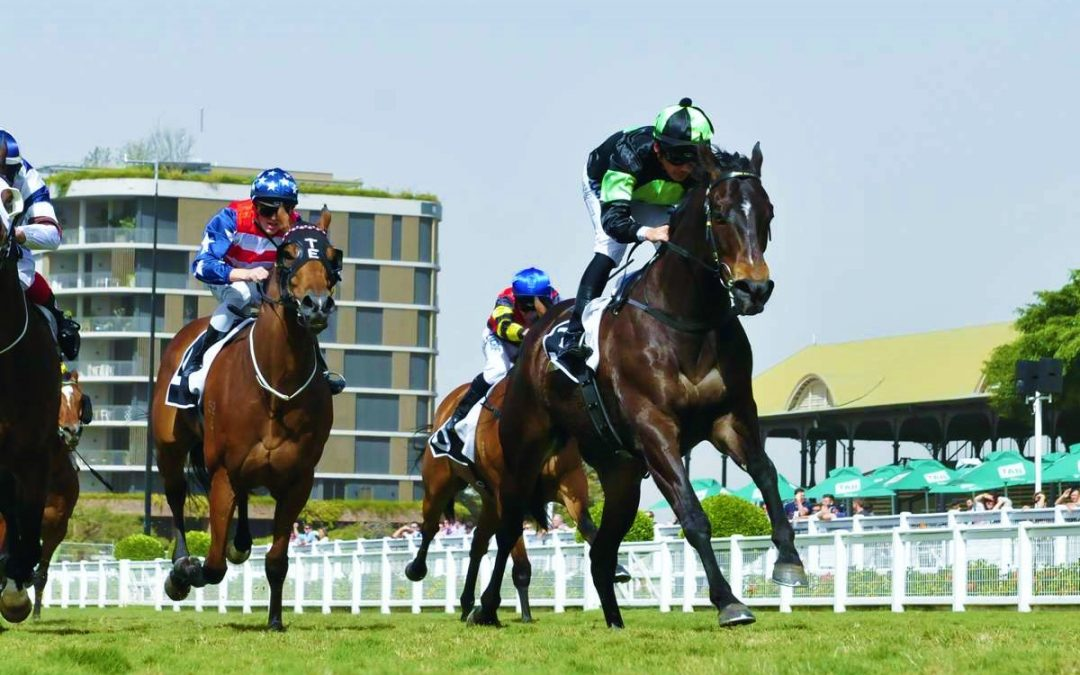 More record prizemoney for Magic Millions Carnival