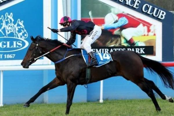 Loved Up's Emotional Scone Guineas Win