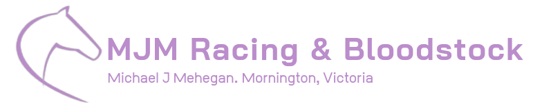 MJM Racing and Bloodstock