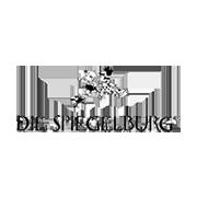 _branddiespiegelburg_logo