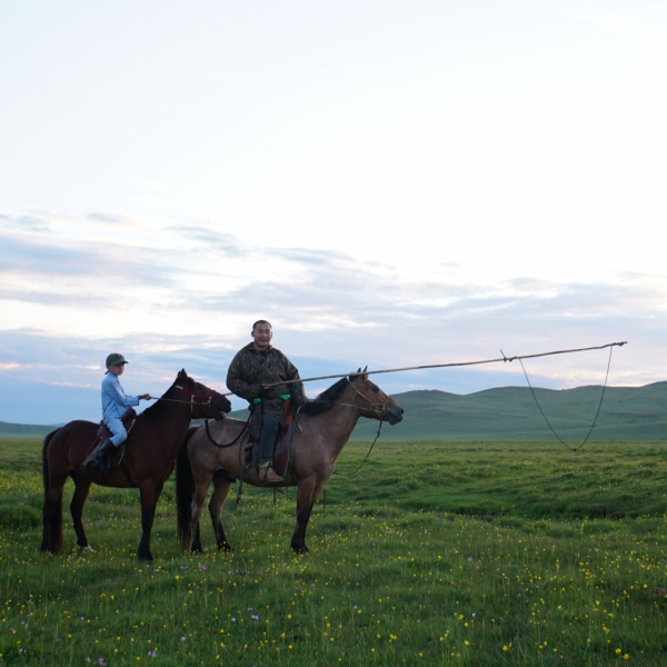 A Very Special Way To Discover The Lifestyle And Traditions Of The Mongols Is To Stay A Few Days With Nomadic Families