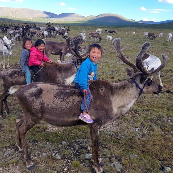 2019 Kids Ride Reindeer In Taiga