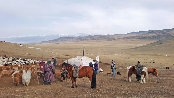Nomadic family visit during lambing season, Western Mongolia