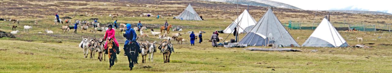 Mongolia Coronavirus & Travel Restrictions