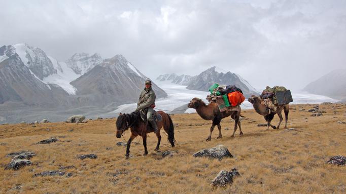 Camel herder, Western Mongolia