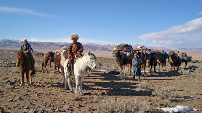 Nomadic family moving with camel caravan, Western Mongolia
