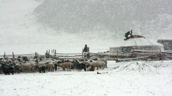 Nomadic family during snow storm, Mongolia