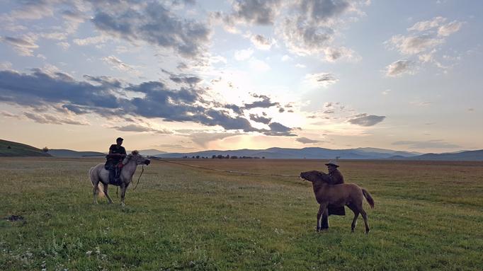Foal branding, Eastern Mongolia