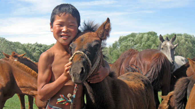 Learn Mongolian horse culture from nomadic families