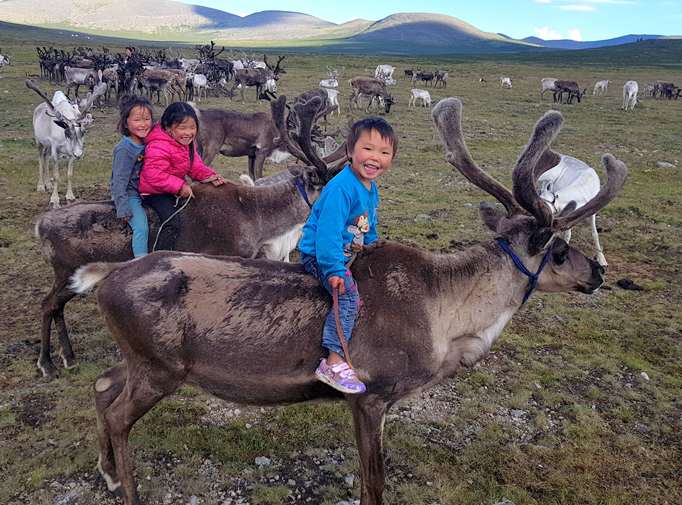 Kids riding reindeer, Northern Mongolia
