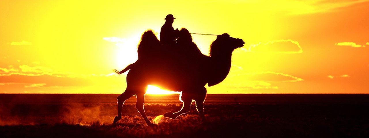 Gobi Desert Tour 2021