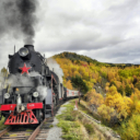 Trans Mongolian/Siberian Railway Tour 2021