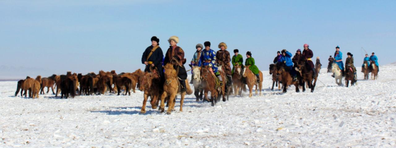 Horse Herders
