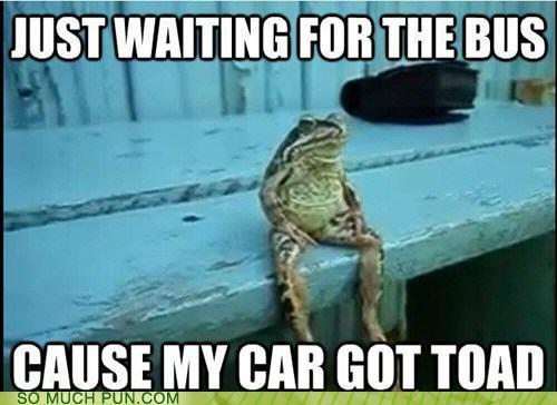 MY CAR GOT TOAD