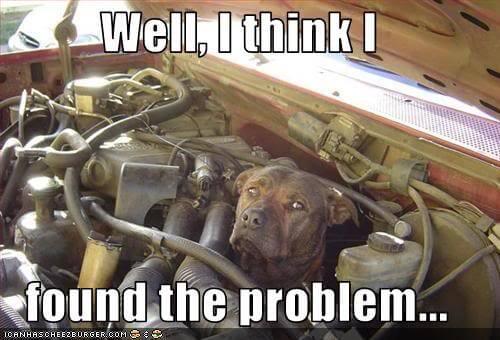 Found the problem!