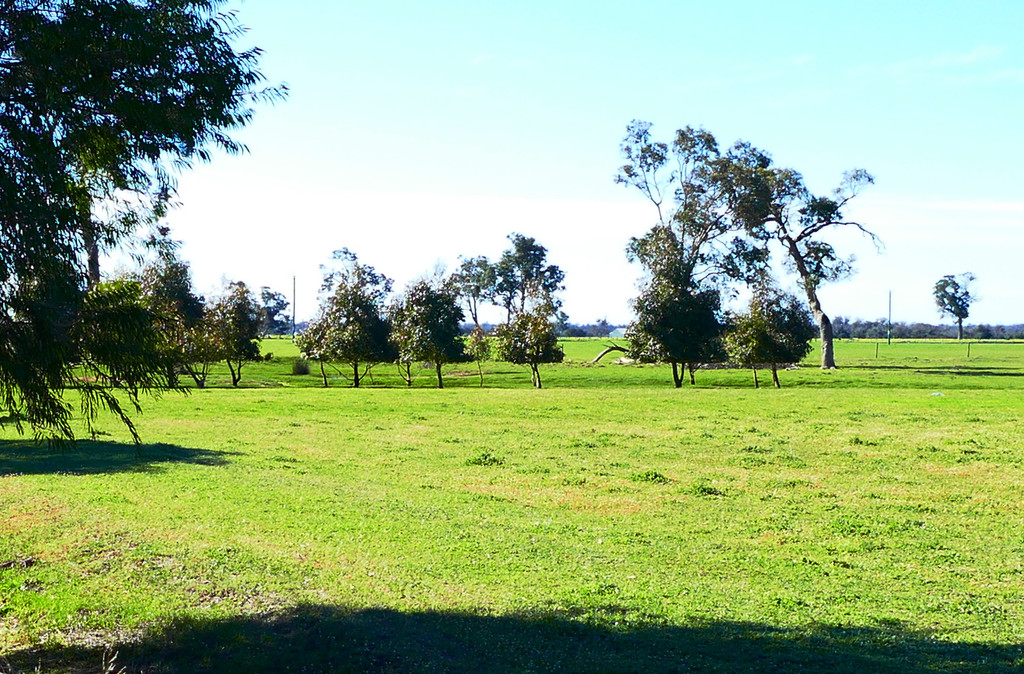 23 Oates Road Abba River - Mixed Farming For Sale - 19979670 - ACTON South West (Bunbury)