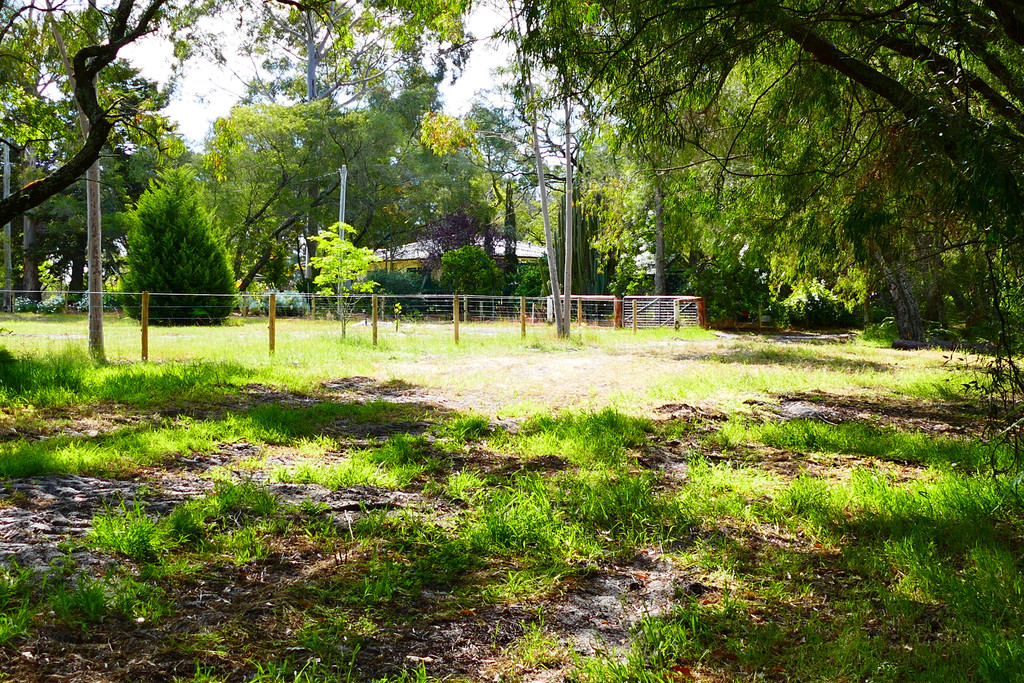 16627 South Western Highway North Boyanup - Mixed Farming For Sale - 18230057 - ACTON South West (Bunbury)