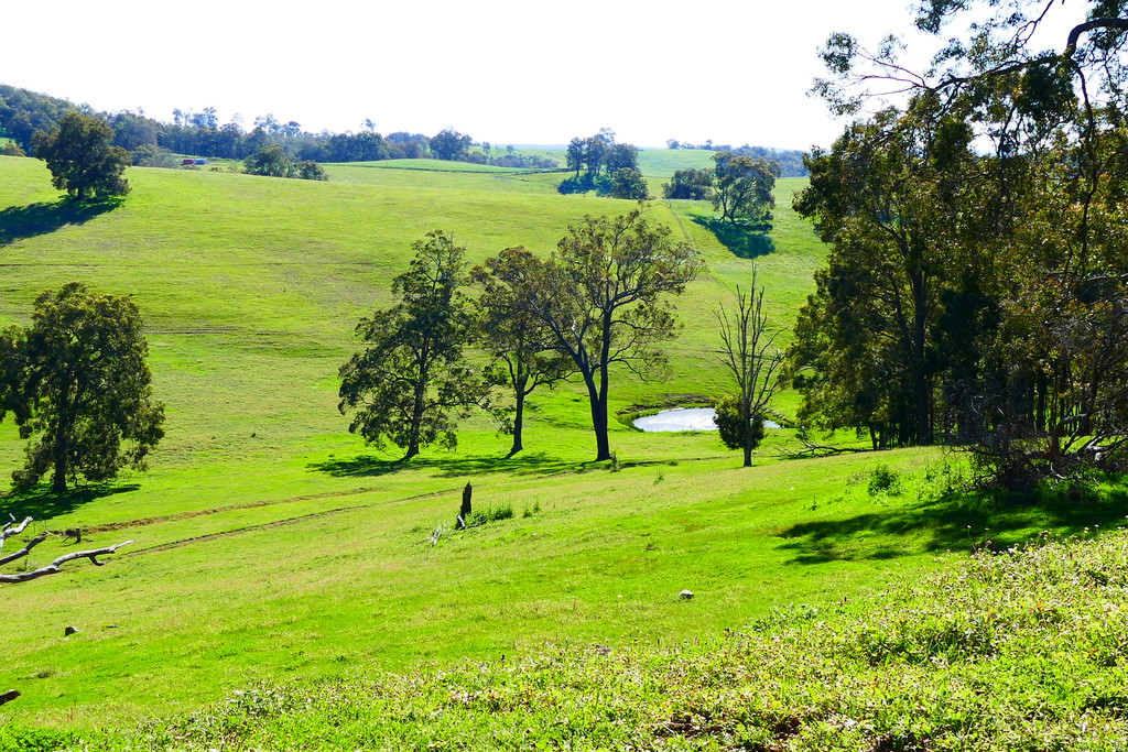 Lot 1053 Joshua Creek Road Crooked Brook - Mixed Farming For Sale - 19759650 - ACTON South West (Bunbury)