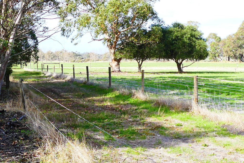216 Ambergate Road Ambergate - Mixed Farming For Sale - 19032505 - ACTON South West (Bunbury)