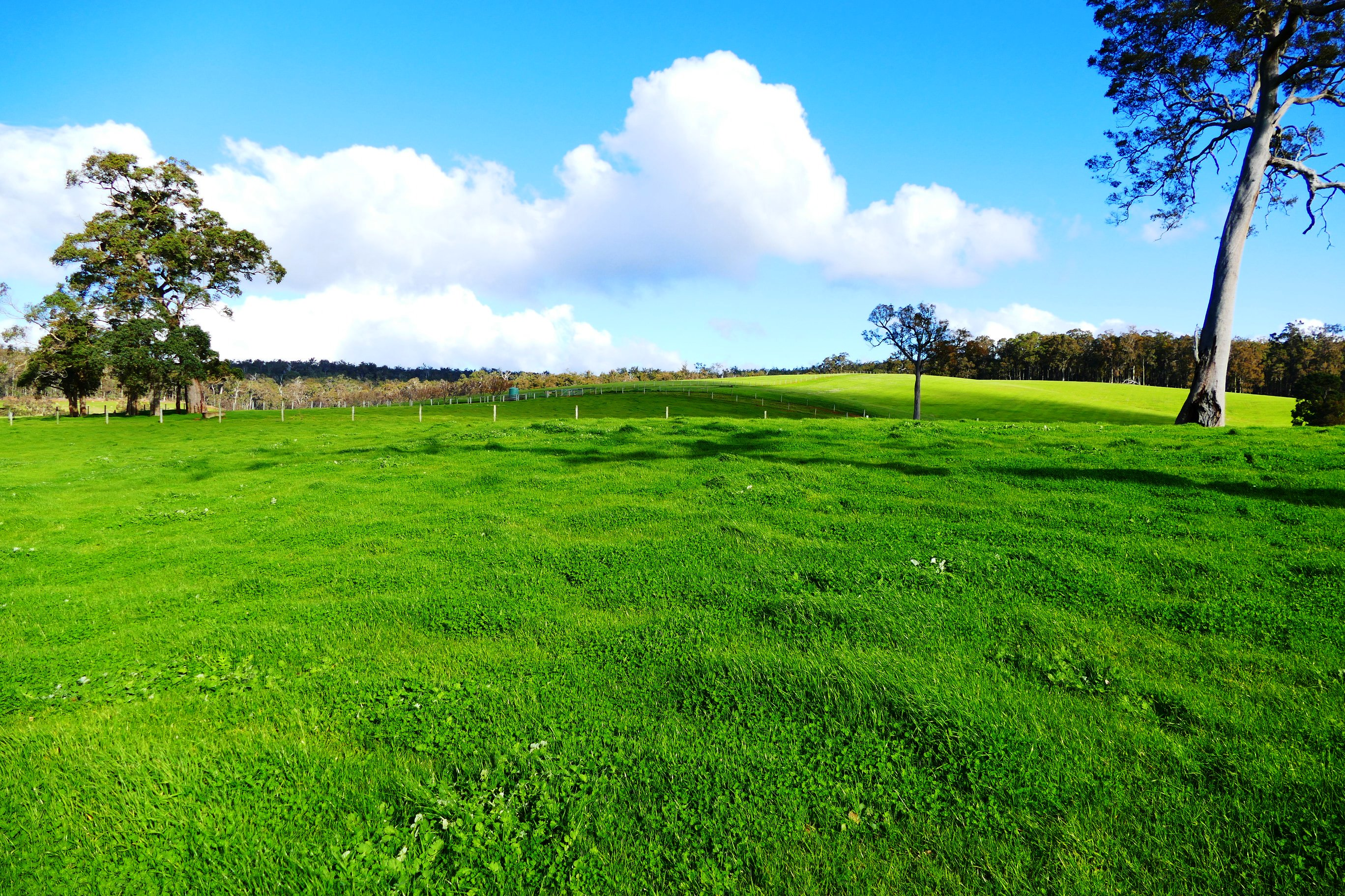 Lot 23 Ferguson Road Ferguson -  For Sale - 8340877 - ACTON South West (Bunbury)
