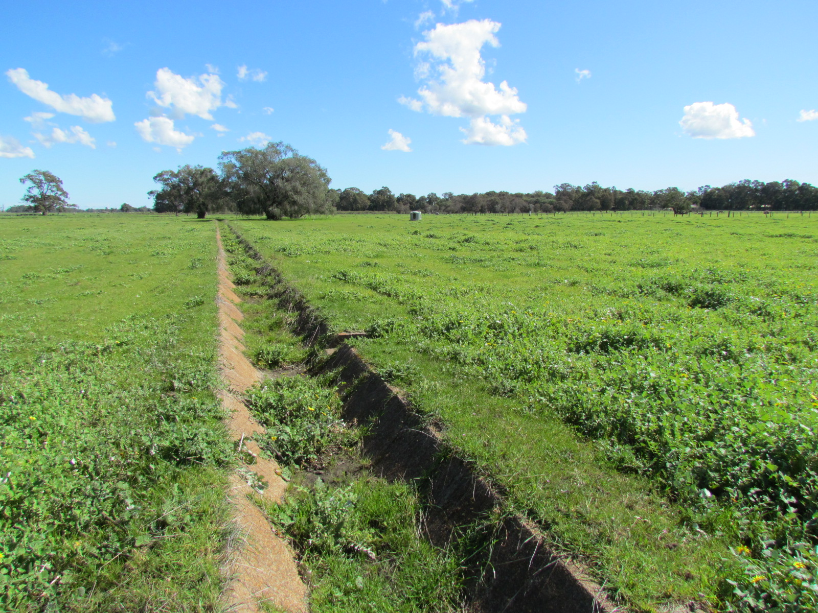 Lot 300 South Western Highway Boyanup -  For Sale - 22502922 - ACTON South West (Bunbury)