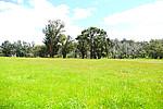 Property in BENJINUP, P/L A Rainoldi Road