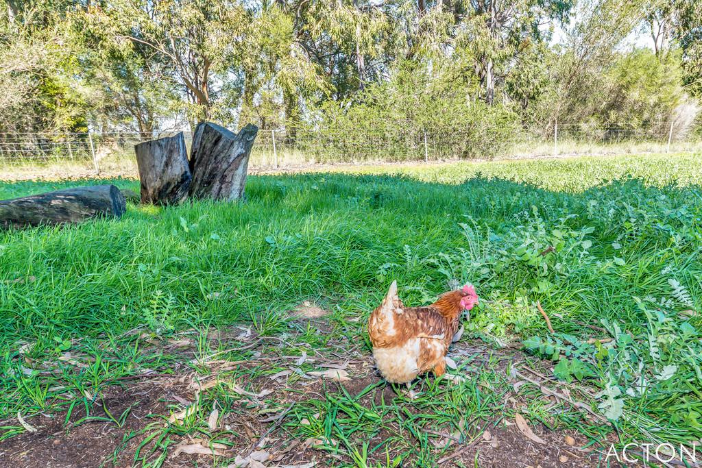 305 Burnside Road Meelon - Mixed Farming For Sale - 21121341 - ACTON Mandurah