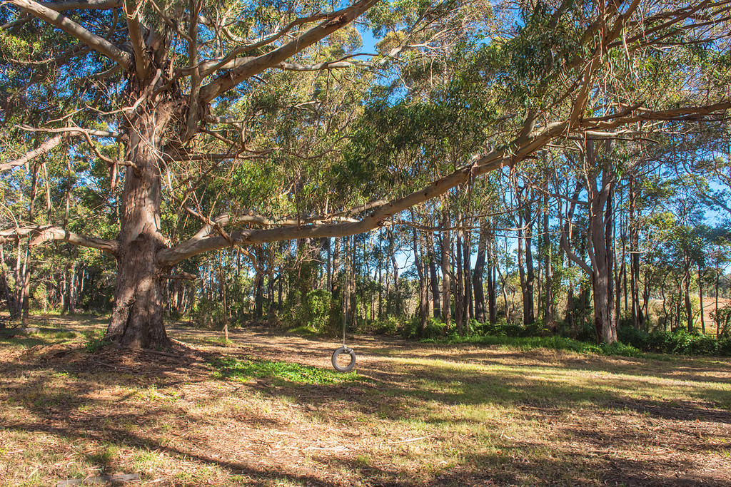 3 Dyson Road Cowaramup - Cropping For Sale - 20336786 - ACTON South West (Margaret River)