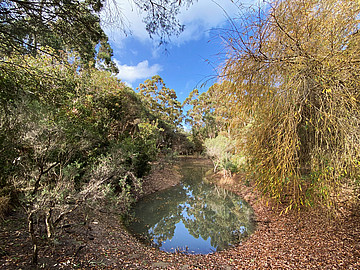 Property in KARRIDALE, Lot 7 & 8 Bussell Highway