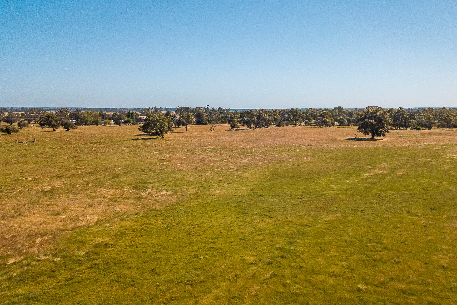 Lot 4 & 2363 Queen Elizabeth Avenue Ambergate - Land For Sale - 21635898 - ACTON South West (Dunsborough)
