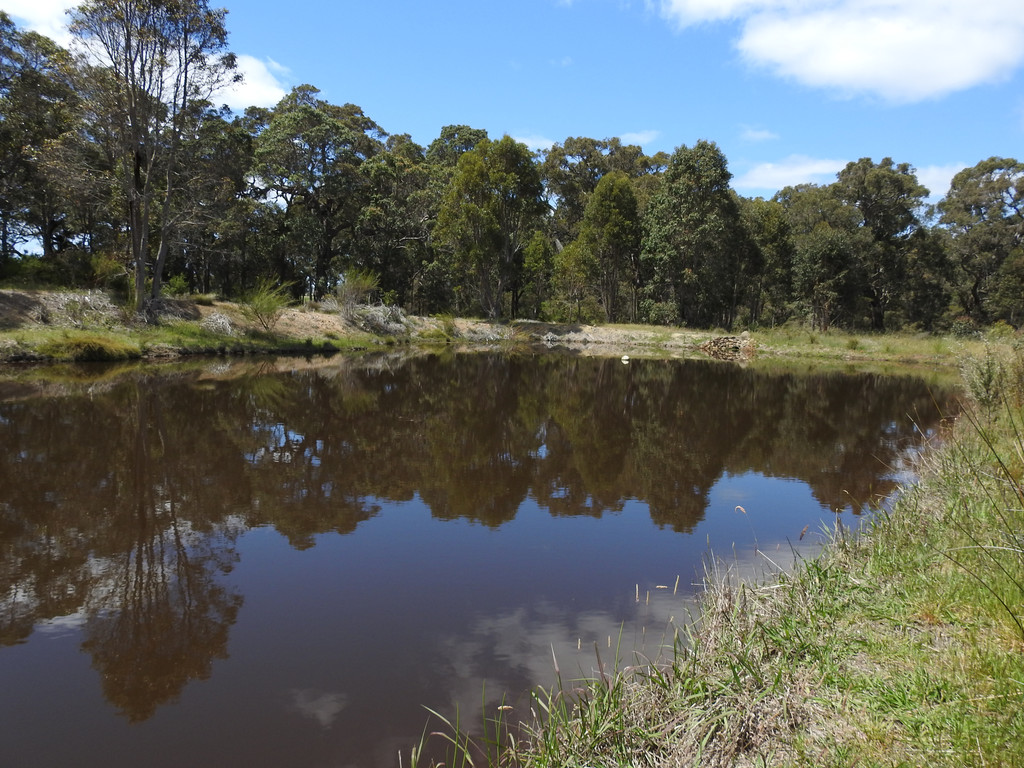 Lot 2278 Bramley River Road Osmington - Lifestyle Section For Sale - 9565854 - ACTON South West