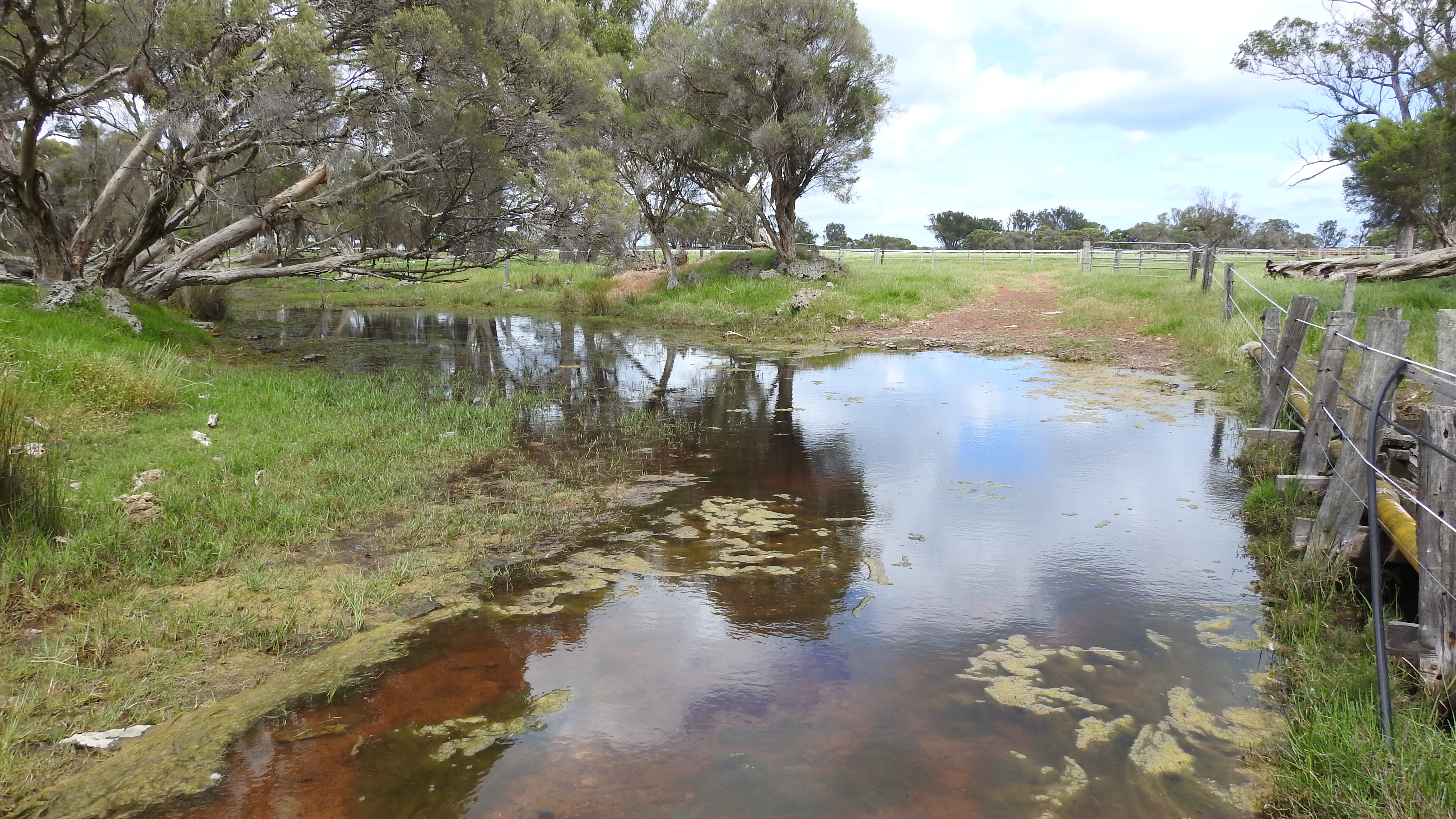 Lot 64 & 1 Ludlow Road North Forrest Beach - Cropping For Sale - 22671789 - Acton Southwest