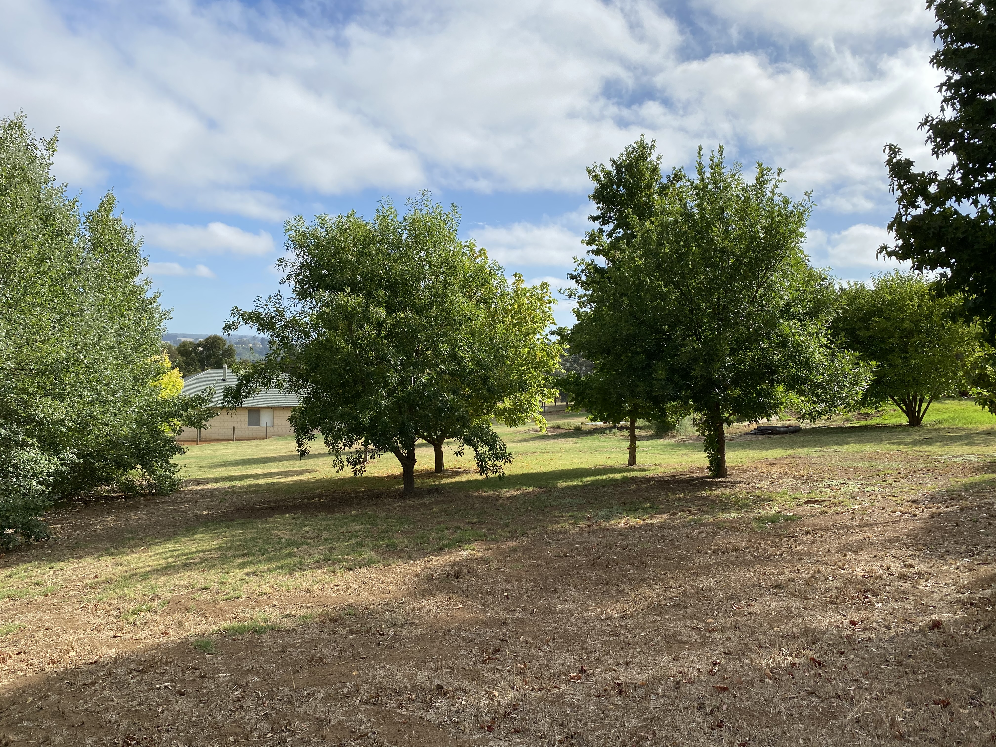 29 Dearle Street Balingup - Land For Sale - 22906403 - Acton Southwest