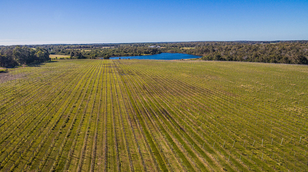 3763 Caves Road Wilyabrup - Viticulture For Sale - 9966932 - ACTON South West
