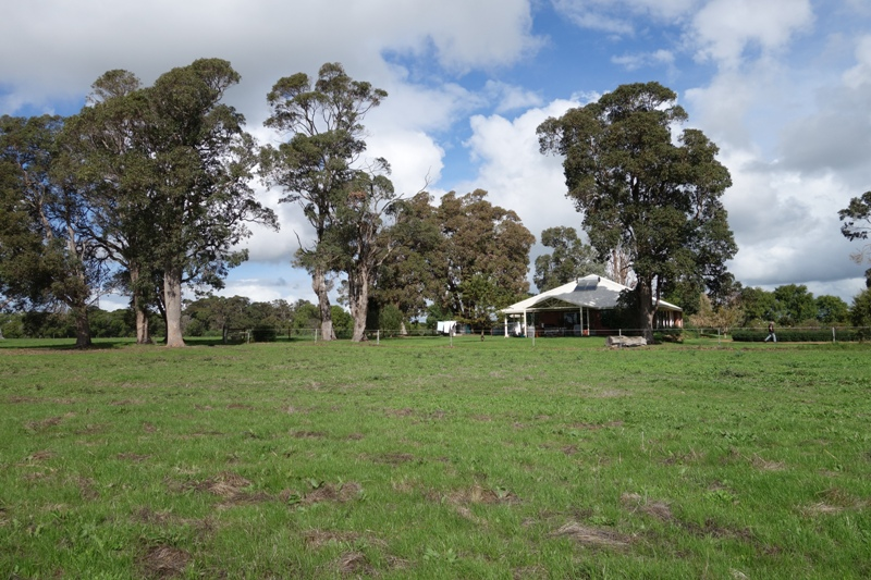 7395 Bussell Highway Metricup -  For Sale - 7747019 - Acton Southwest