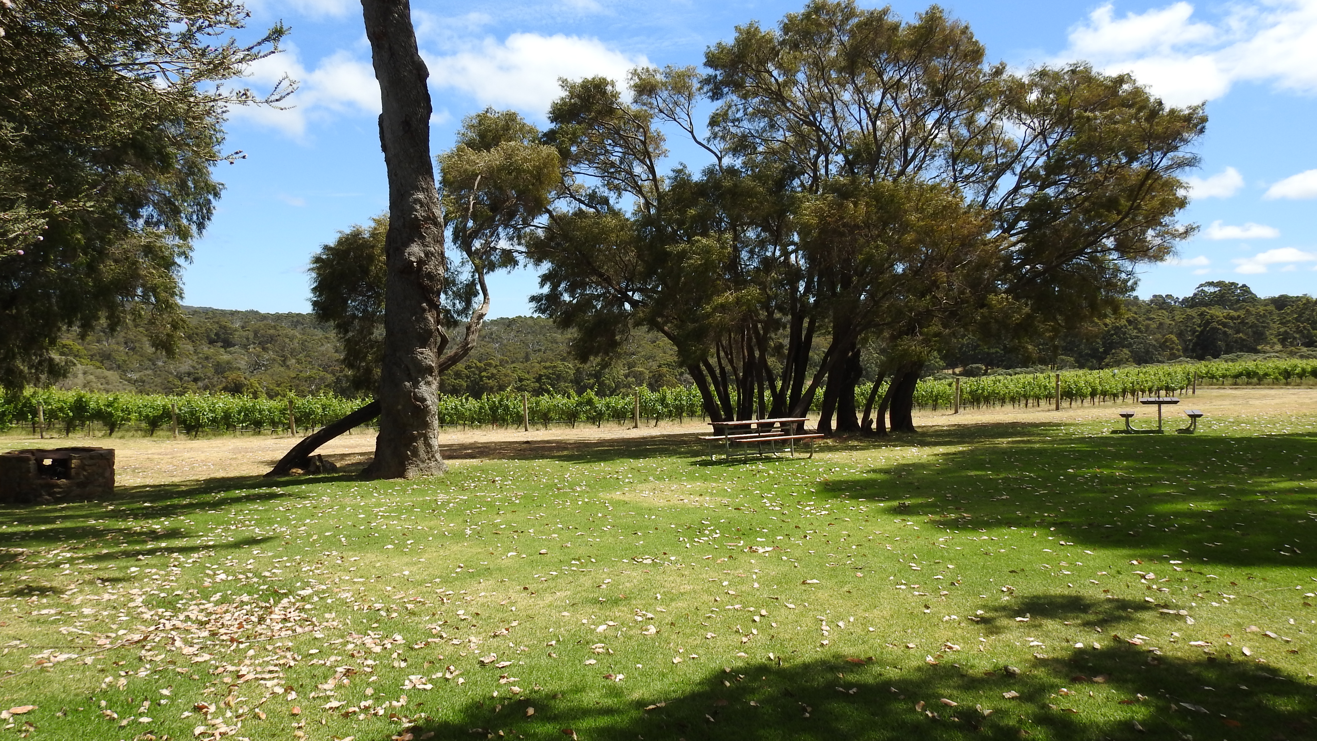 659 Boodjidup Road Margaret River - Viticulture For Sale - 20483170 - Acton Southwest