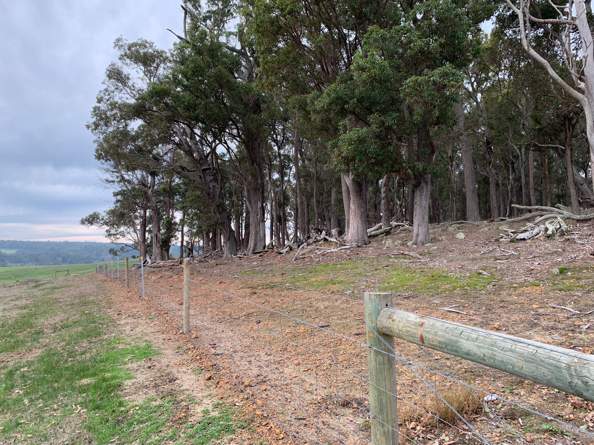 Lot 105 Bessell Road Rosa Brook -  For Sale - 20910346 - Acton Southwest