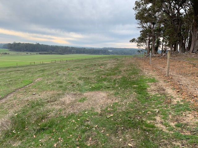 Lot 105 Bessell Road Rosa Brook -  For Sale - 20910346 - ACTON South West