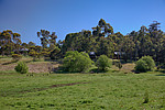 Property in BALINGUP, 21541 South Western Highway