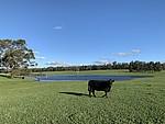 Property in MANJIMUP, Glenfield Farm Edwards Road (Perup)