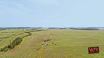 Property rural in TORBAY