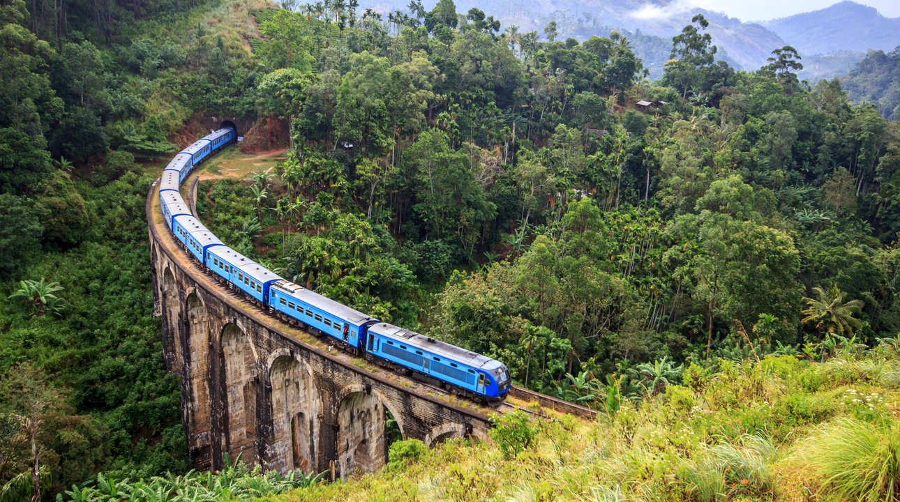 8 Day Sri Lanka Tour incl. flights, meals and accommodation